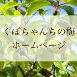 くぼちゃんちの梅 ホームページ