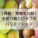 【青梅・黄梅シロップ比較】手作り梅シロップのバリエーション