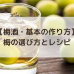 【梅酒・基本の作り方】梅の選び方とレシピ